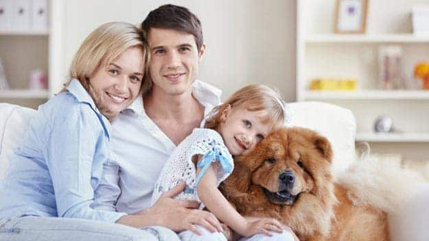 Wills & Trusts dog-young-family Direct Wills North Acton